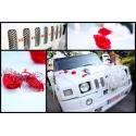 Papuošimai ir dekoracijos automobiliui